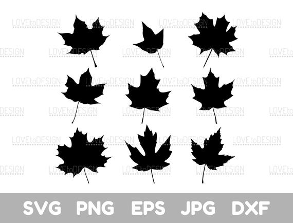 Maple Leaf Decal Sticker Canada Tree Fall for Car Window Wall Door Laptop Decor