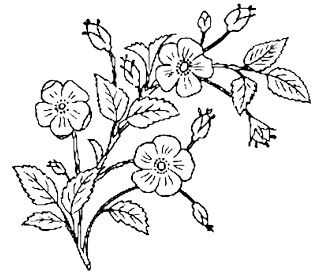 21++ Free black and white flower clipart images ideas