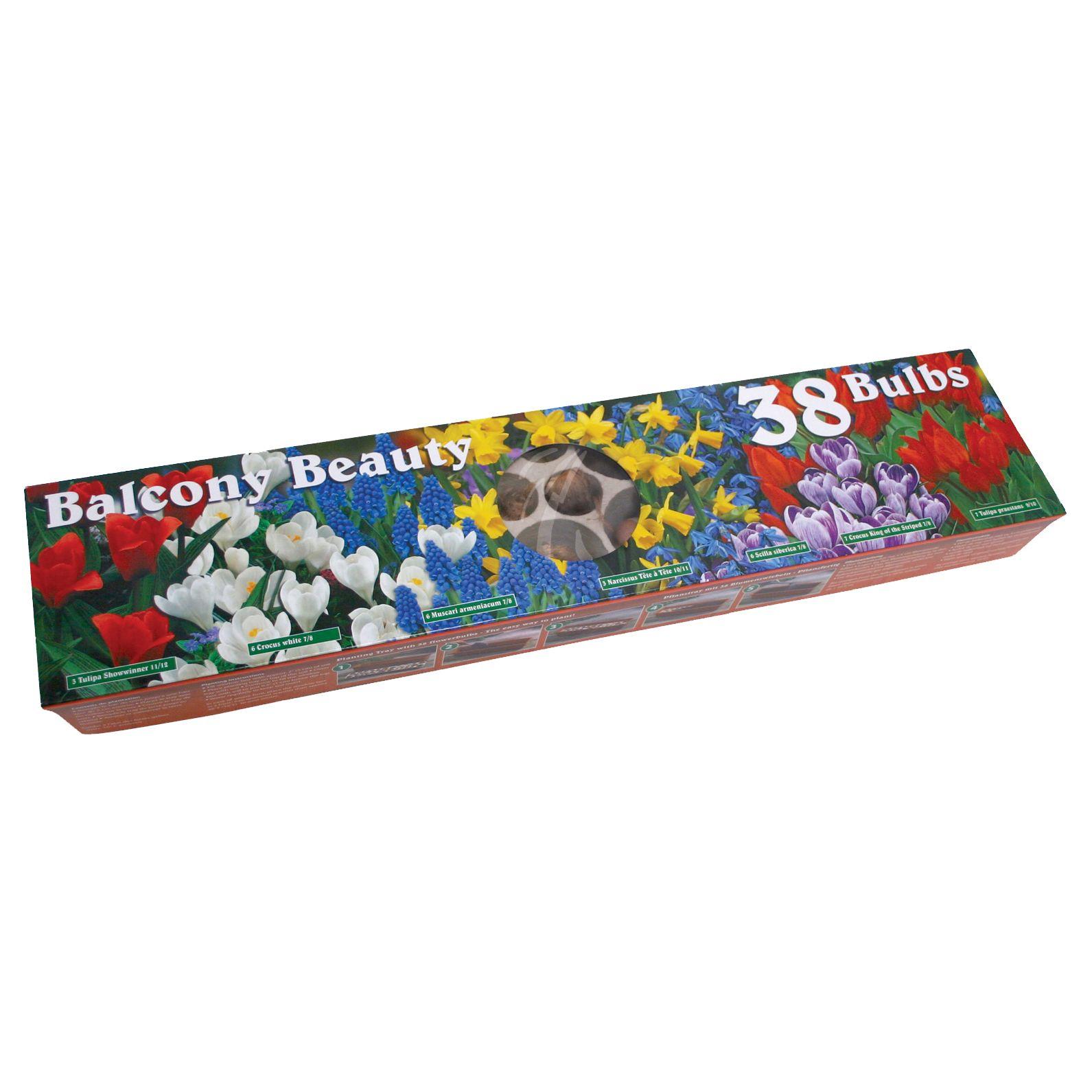 € 6,46 (incl. btw)  Plantschaal balkon gemaakt van papier met verschillende bloembollen erin. Neem de kaart van de verpakking en plant simpel de complete schaal met inhoud in de grond.