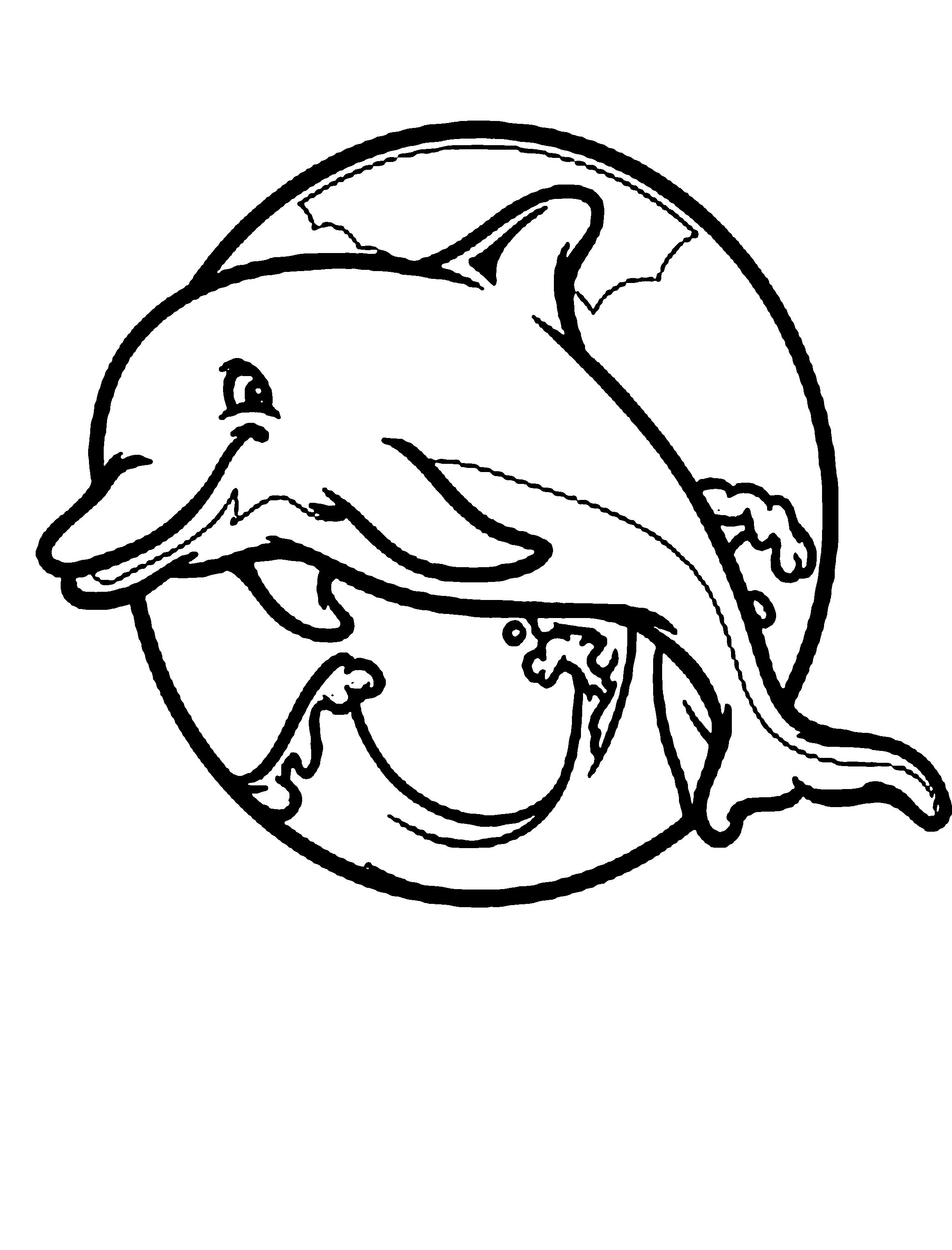 Dolphin Coloring Pages PDF - Free Coloring Sheets  Dolphin