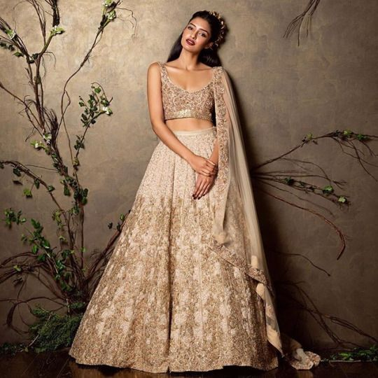 Soma Sengupta Indian Bridal Gold White Sweetness Indian - White Indian Wedding Dress
