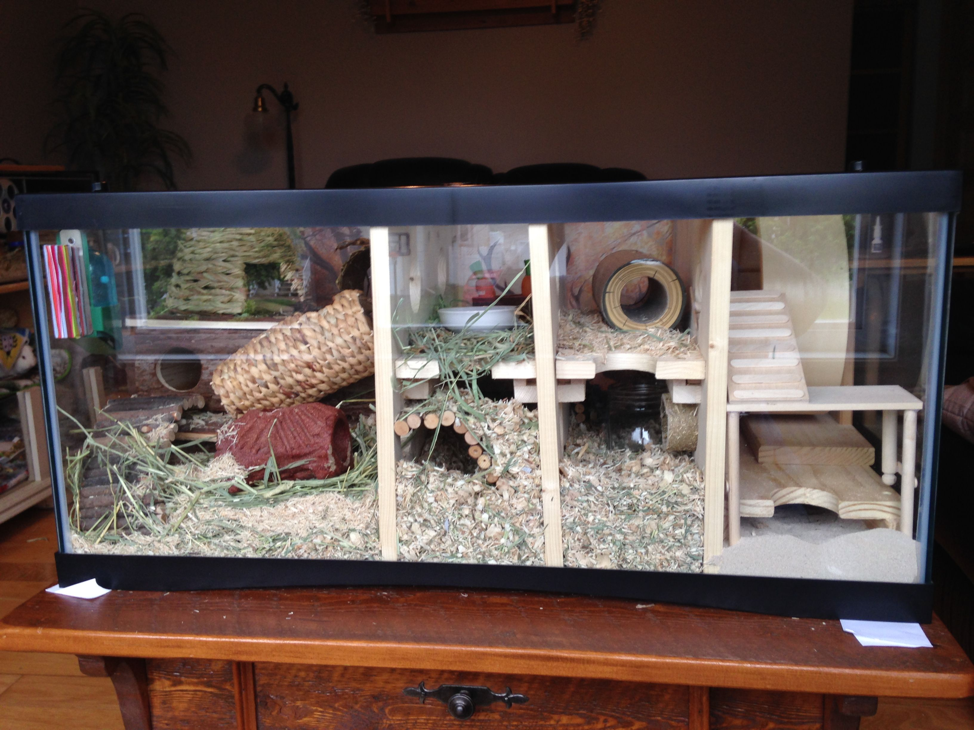 My gerbil cage is made with a turtle aquarium of 36 wide for Fish tank for hamster