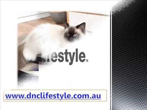 Check Out The Amazing Range Of Modern Cat Scratcher And Other Accessories  That Https:/