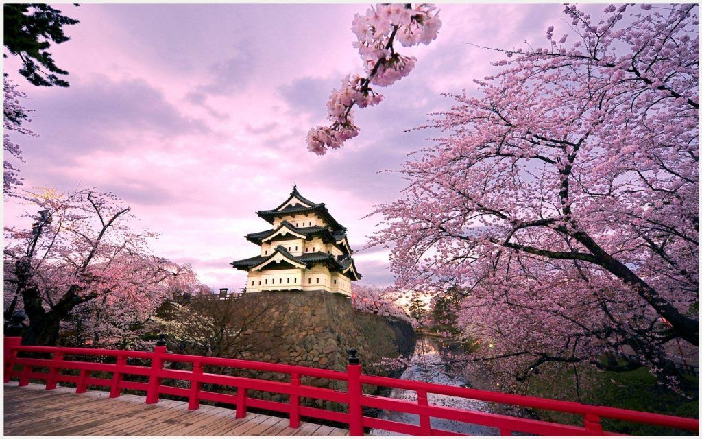Hd Japan Wallpapers 1080p: Hirosaki Castle Japan Wallpaper