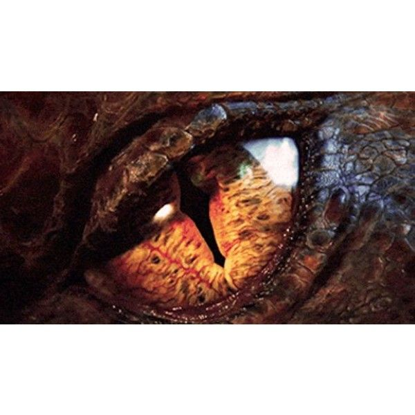 The Making Of The Hobbit The Desolation Of Smaug totalfilm.com ❤ liked on Polyvore featuring animals, fandoms, hobbit, lord of the rings and supernatural