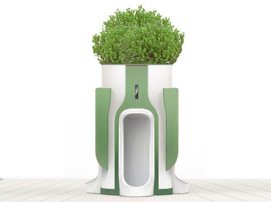 Public Urinal Planter Harnesses The Power Of Pee To Fertilize Plants Amenagement Jardin Projet Urbain Toilettes