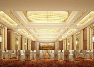 Five Star Hotel Banquet Hall With Carpet With Images Hall