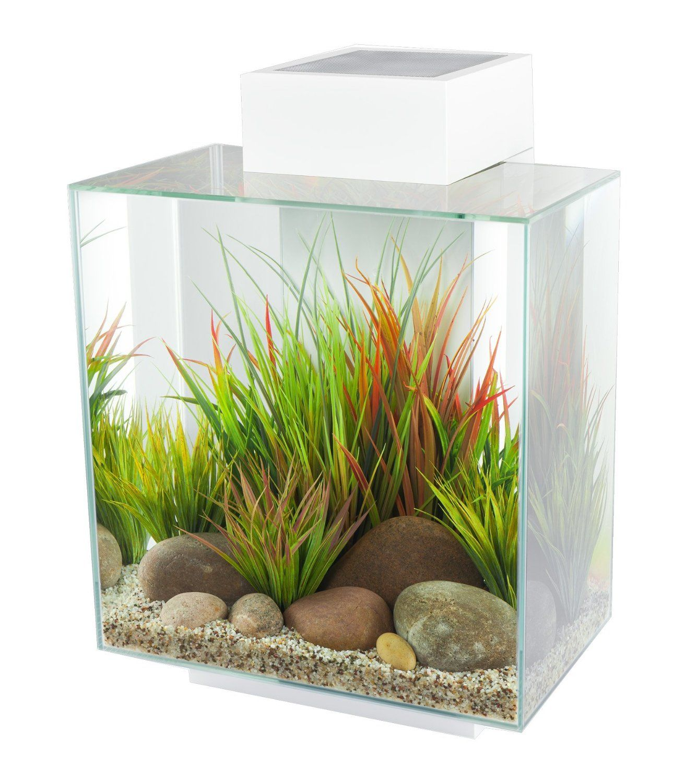 Amazon Fluval Edge 12 Gallon Aquarium with 42 LED Light