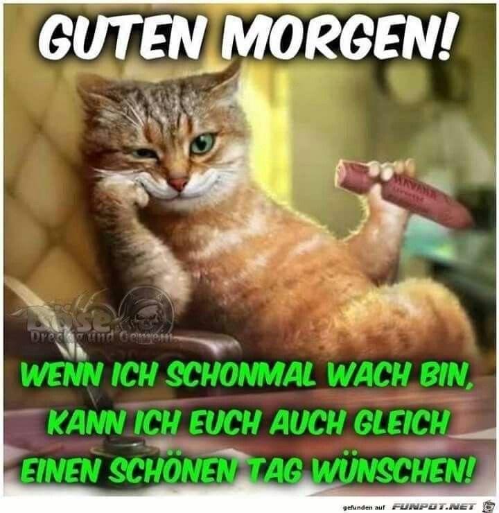 Pin von Heike Schlatterer auf guten Morgen (mit Bildern ...