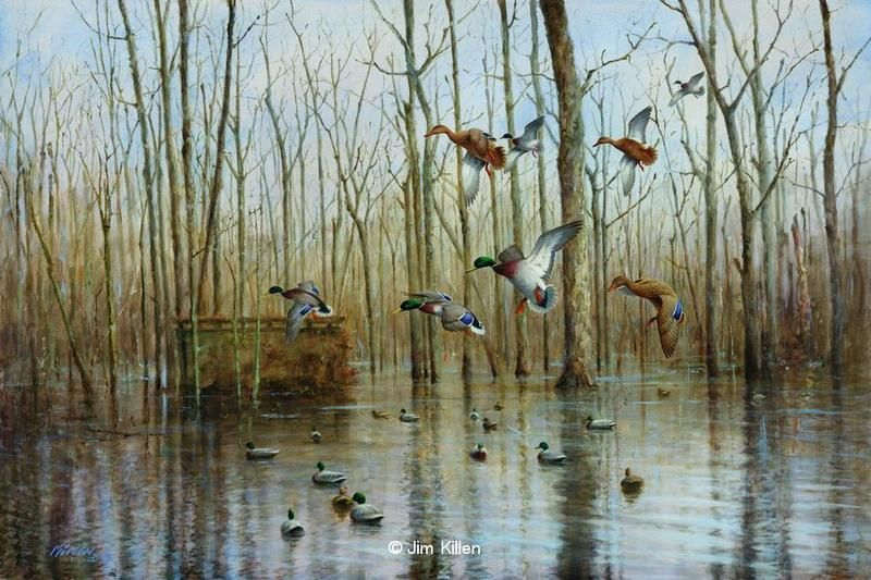 Duck Blind Ideas Diy