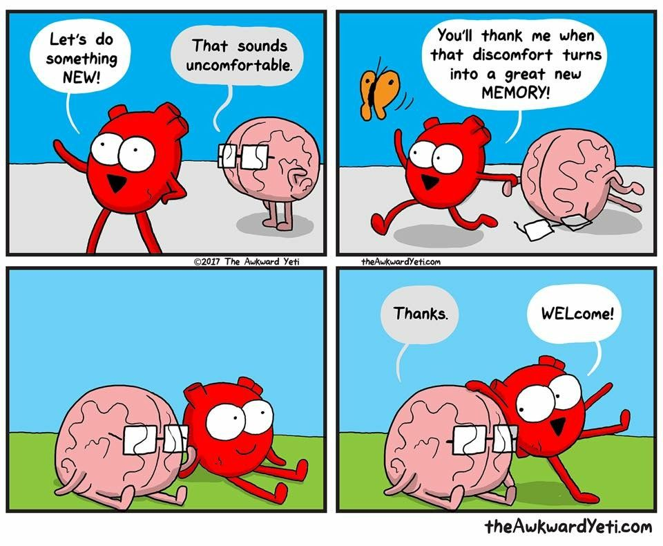 Pin by Amy on Heart and Brain (With images) Awkward yeti