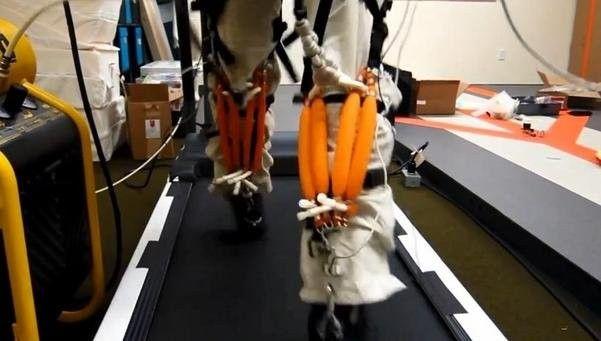 Desarrollan un exoesqueleto robótico que permite aumentar la fuerza humana |