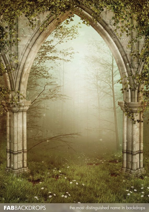 Enchanted Fairy Forest Backdrop Fairy Or Princess By