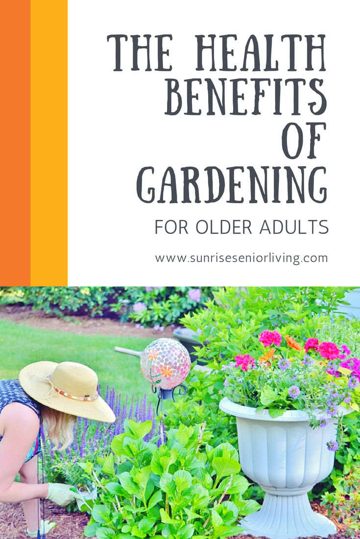c9ae2cacbe83447754430236c310eee9 - Benefits Of Gardening For The Elderly