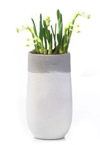 Bloempot Binnen Wit.Bloempot Binnen Wit Grijs Hoog 25cm Plant Living Plants Planter