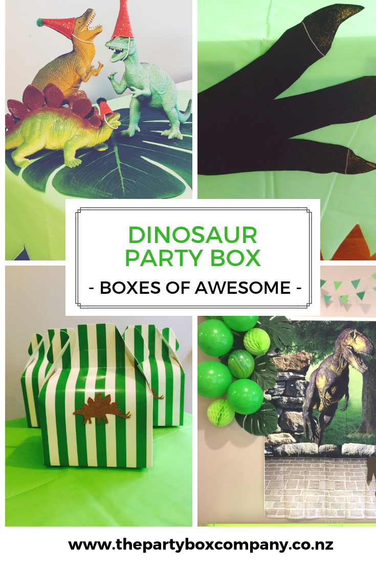 Dinosaur Party Dinosaur Party Supplies Dinosaur Party T The