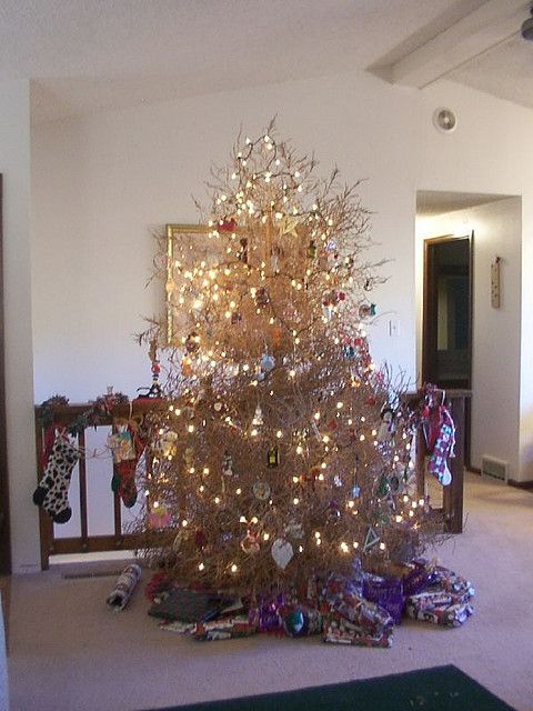 Tumbleweed Xmas Tree I Wouldn T Do This Because I D Be Afraid It D Be So Dry It D Catch Fire From The Heat Of T With Images Holiday Decor Christmas Home Xmas