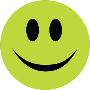 Smiley Face Sticker Lime Green Novelty Humorous Vinyl