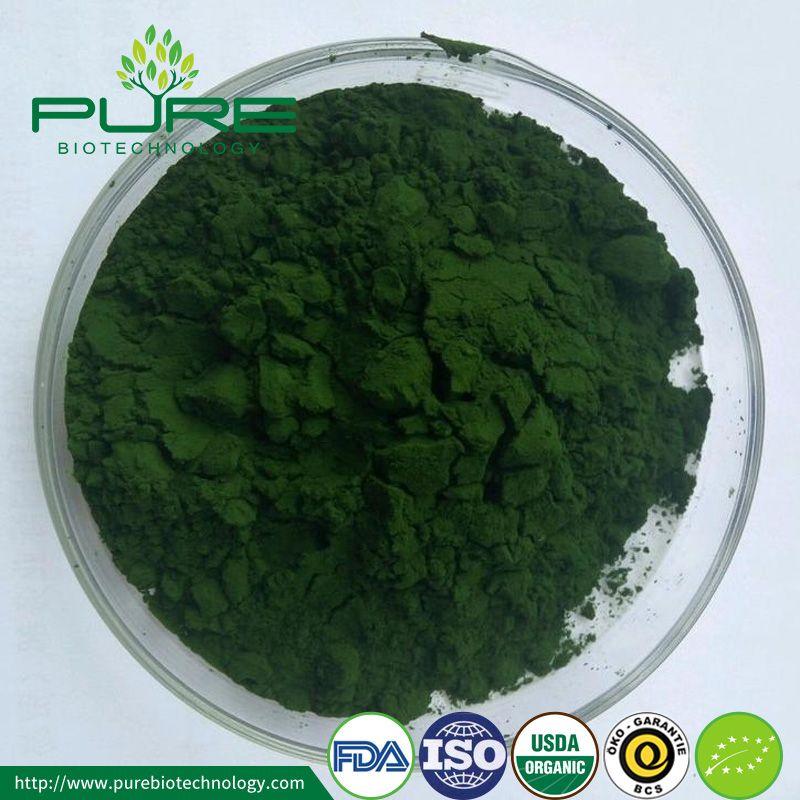 Broken Cell Wall Organic Chlorella Powder Chlorella Powder Chlorella Vegetarian Protein