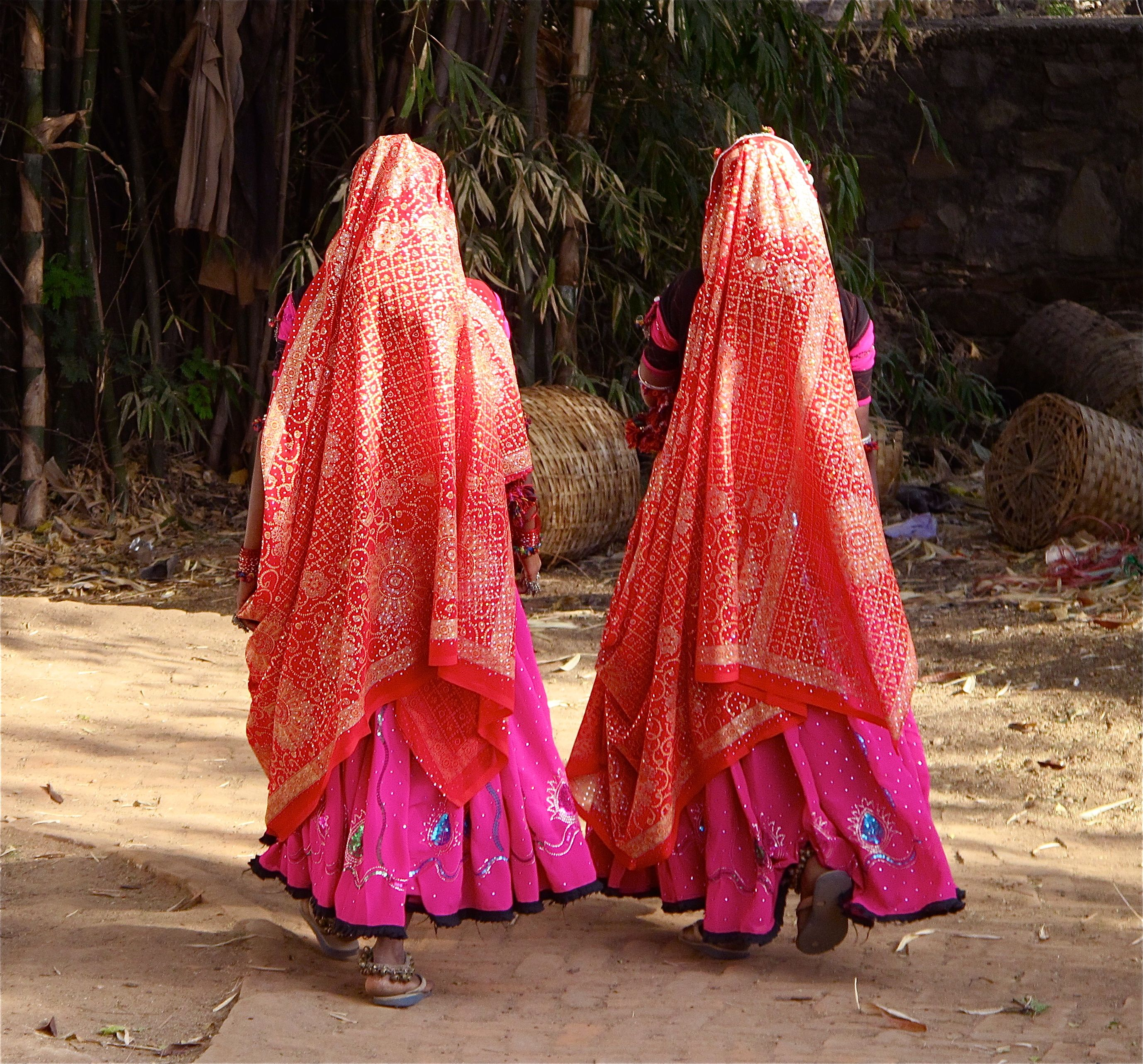 Udaipur, Rajasthan. Sylviane A. Diouf