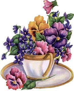 Teacup pansies