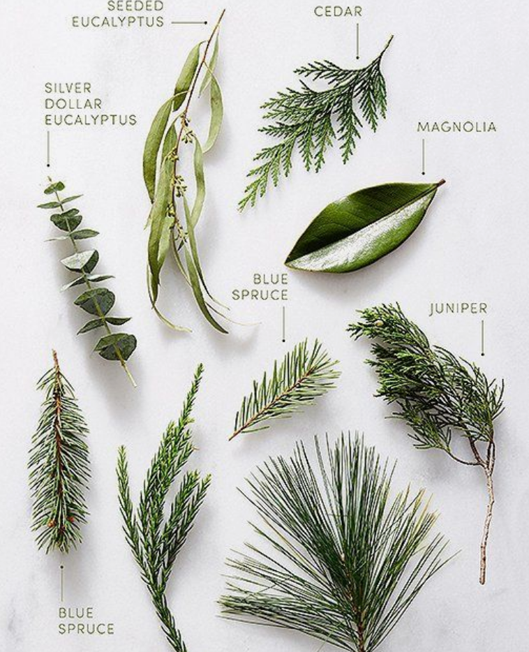 Here's A Little Guide To Seasonal Greens. #plants