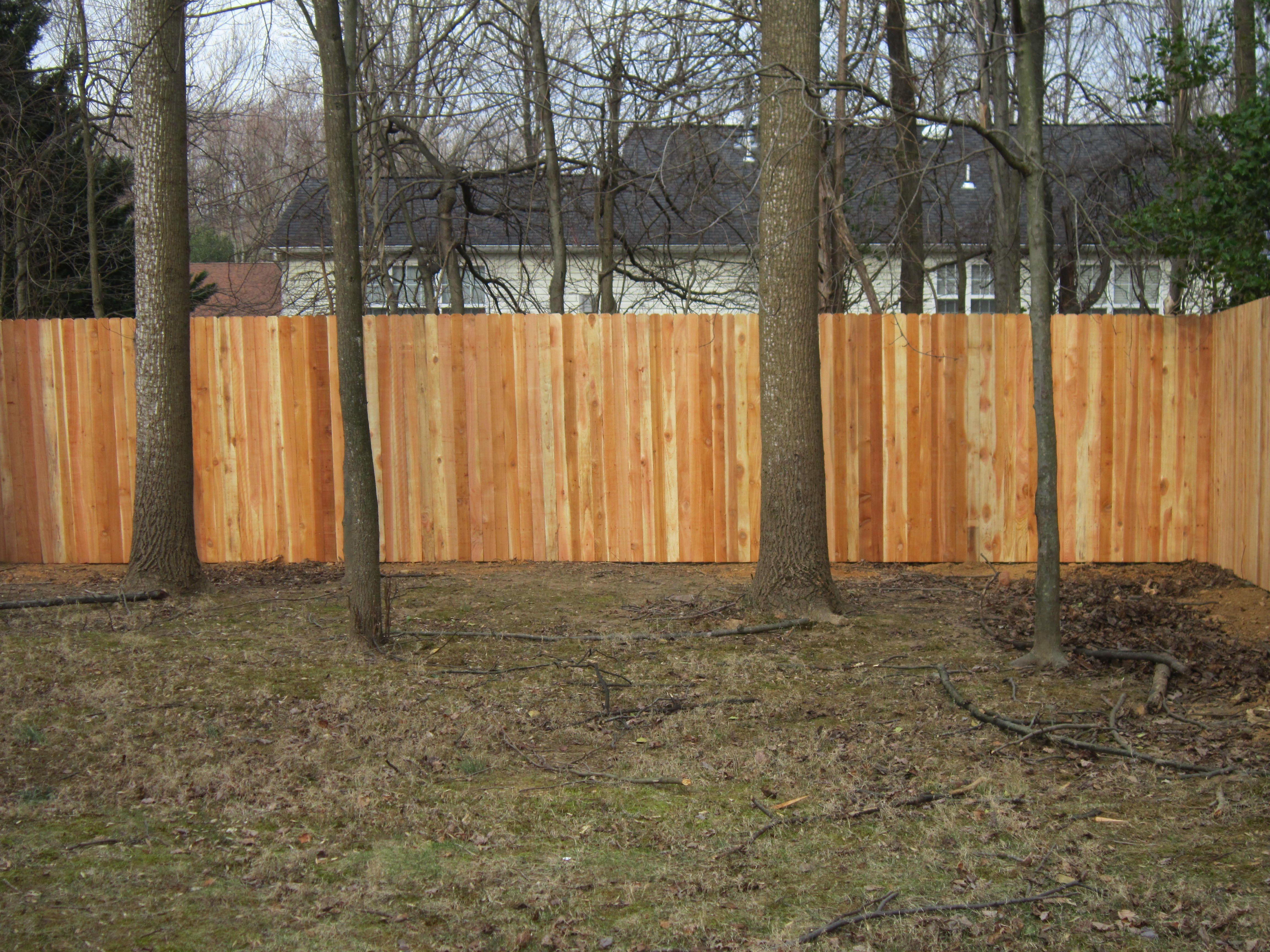 Western Red Cedar Privacy Fence - Solid Board with a Dog Ear