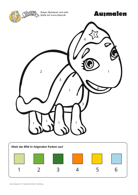 Malen nach Zahlen: Male die Schildkröte in den vorgegebenen Farben ...
