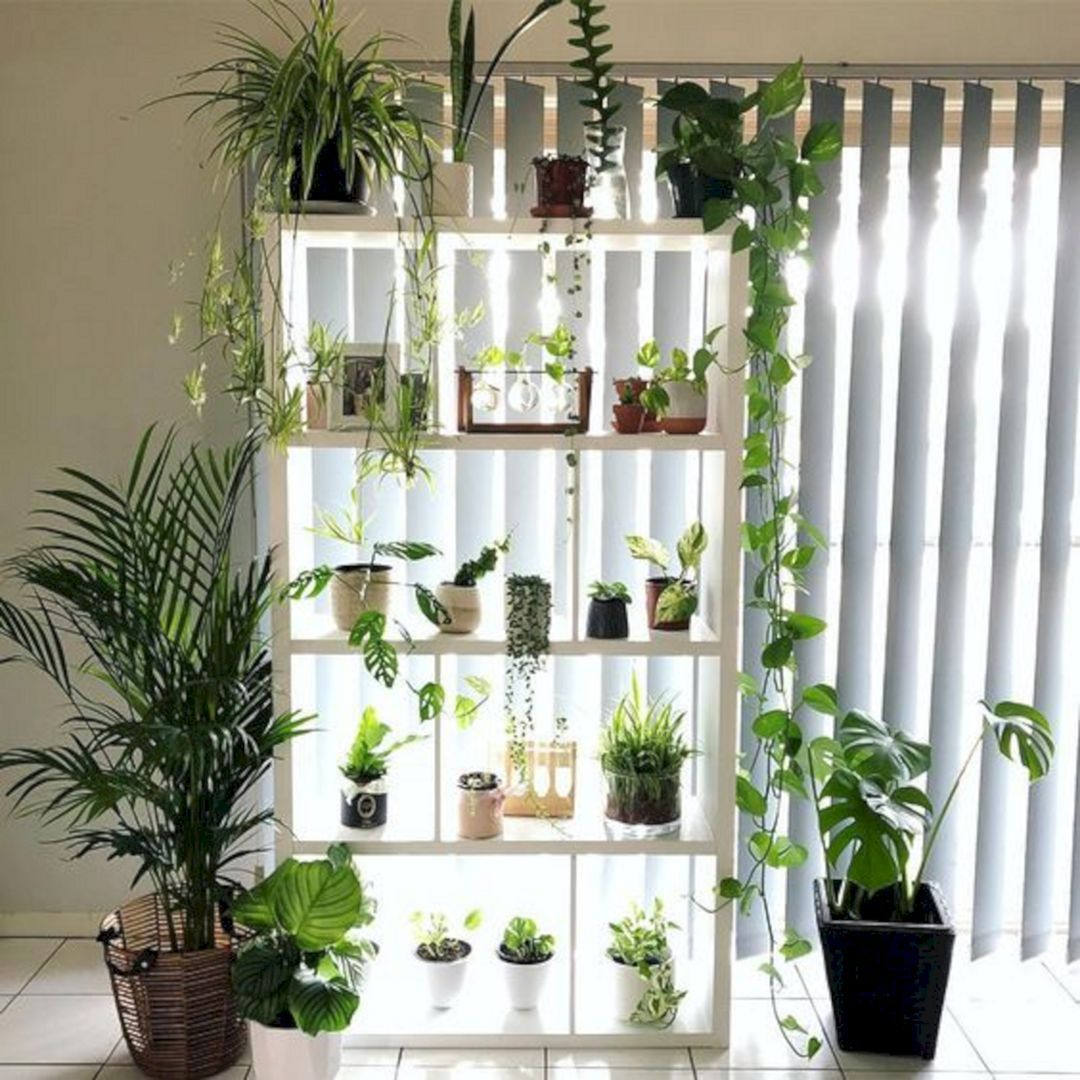 10 Simple Indoor Garden Design For Easy And Cheap Home Decoration Ideas Gardenideas Indoo Plant Decor Indoor Plant Decor Garden Design
