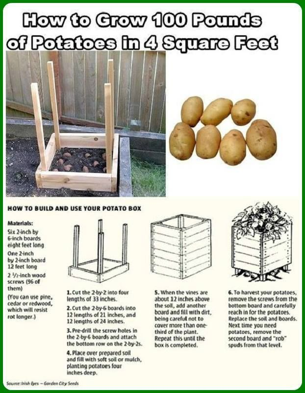 We are going to give this a shot can't wait for warm weather so we can start planting! Grow 100 Pounds of Potatoes In Four Square Feet