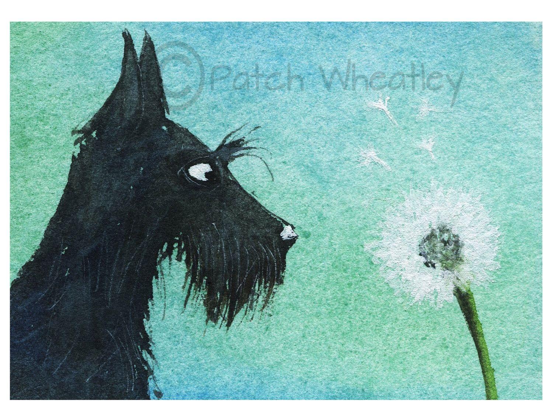 Etsy Art Scottie Dog Art Print Scottish Terrier Dandelion 100 By