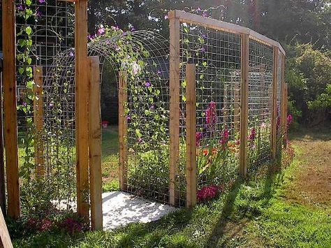 hog panels & cattle panels used vertically ~ LOVE this concept, especially when considering deer, elk or feral horse fencing for a garden zone ~ also love that it is somewhat curved #vertikalergemüsegarten