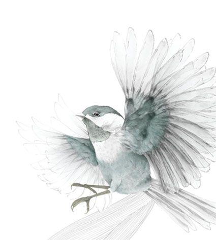 Beth Emily Art Bird Drawings Bird Art Birds