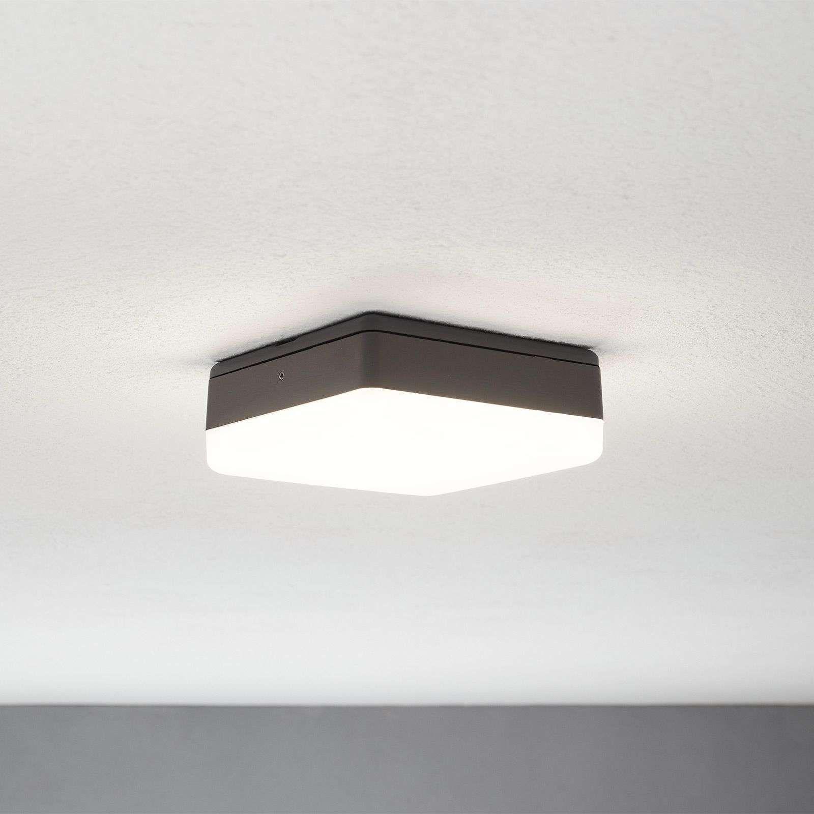 Led Plafondlamp Thilo Grijs 16 Cm Plafondlamp Led Led Lamp