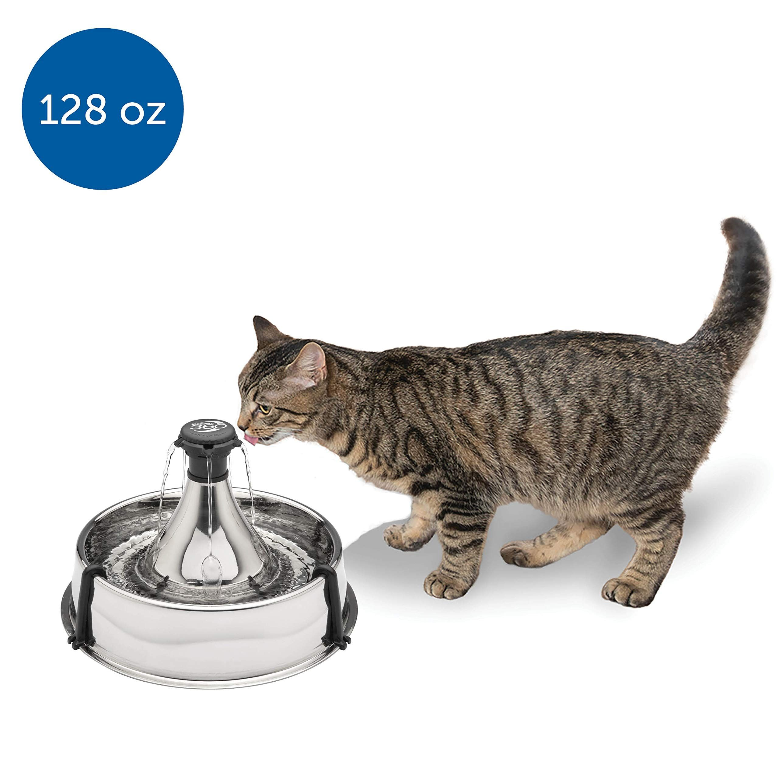 Petsafe Drinkwell 360 Multi Pet Stainless Steel Dog And Cat Fountain Filtered Water 128 Oz Water Capacity Rea In 2020 Cat Fountain Multi Pet Dog Water Fountain