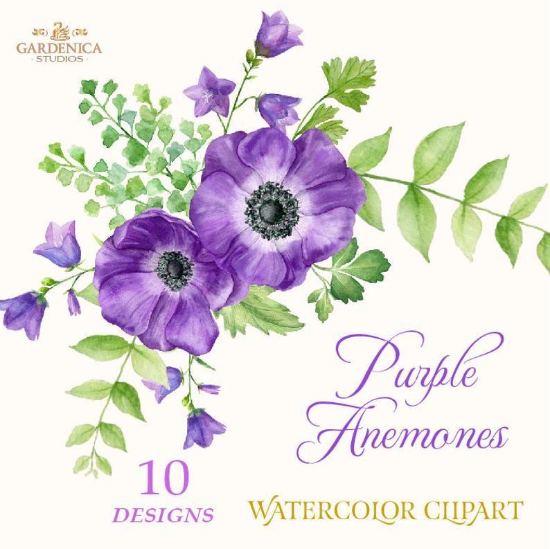 Watercolor Purple Flowers Anemone Clipart Purple Flower Etsy Purple Flowers Purple Flower Tattoos Flower Clipart