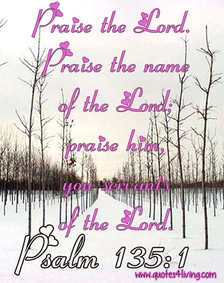 Psalm 135:1 Praise the Lord. Praise the name of the LORD; praise him, you servants of the Lord.