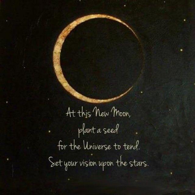 Feliz Luna Nueva en Cáncer, lunáticos! #luna #LunaNueva #cáncer #astrología  #lunación #comienzos #inicios #start #begi…   Luna nueva, Sol luna, Luna  llena