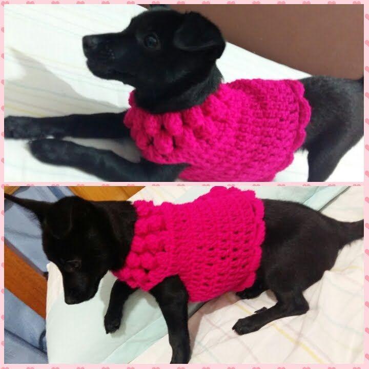 Roupinha de Cachorrinho de Crochê com Lã - Parte I | Croche e trico ...