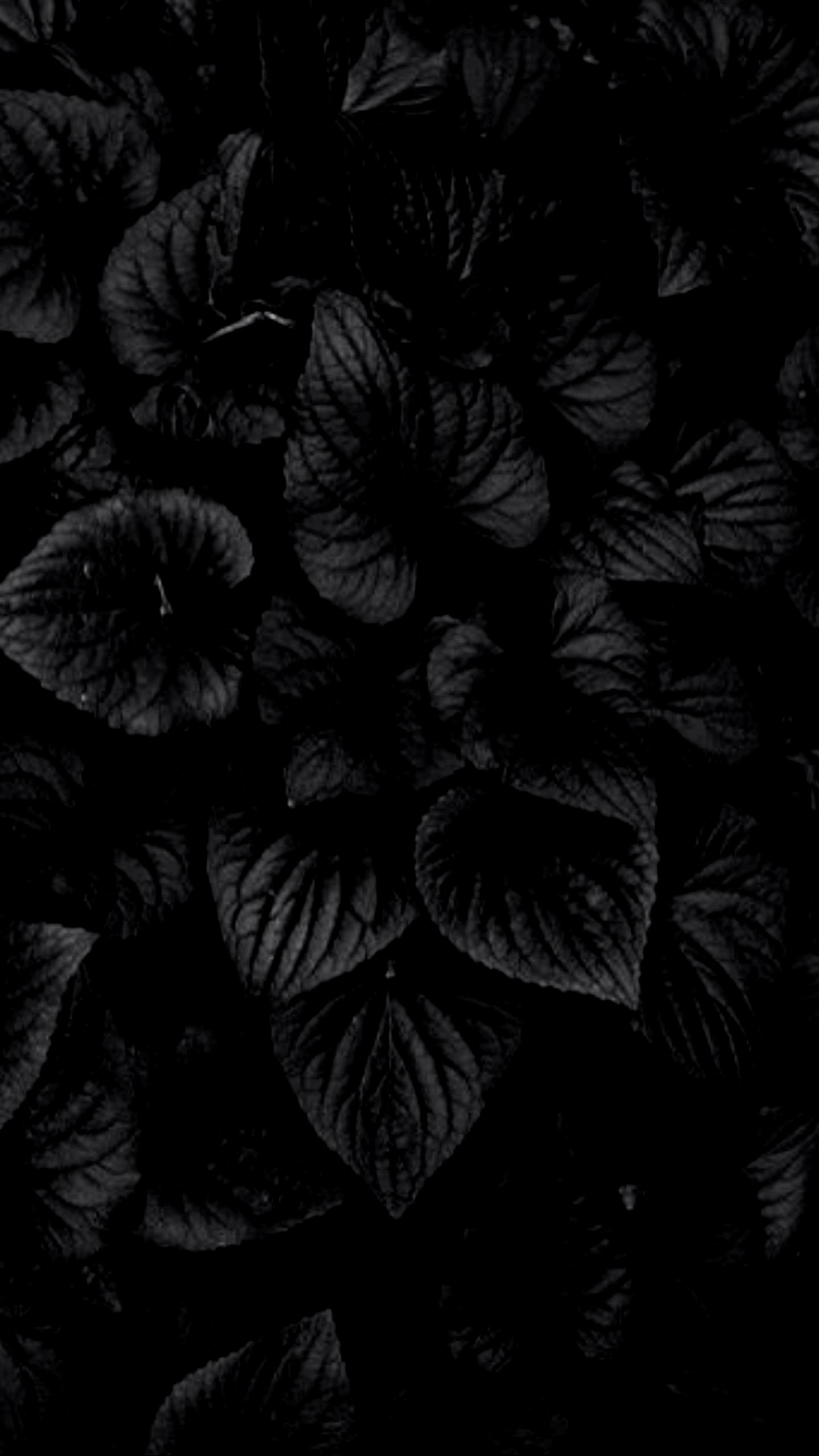 4k Wallpapers Of Dark Gallery Wallpaper 4k 4kwallpaper 4kwallpaperphone 4kchristmaswallpaperiphon Siyah Duvar Kagidi Siyah Guller Telefon Duvar Kagitlari