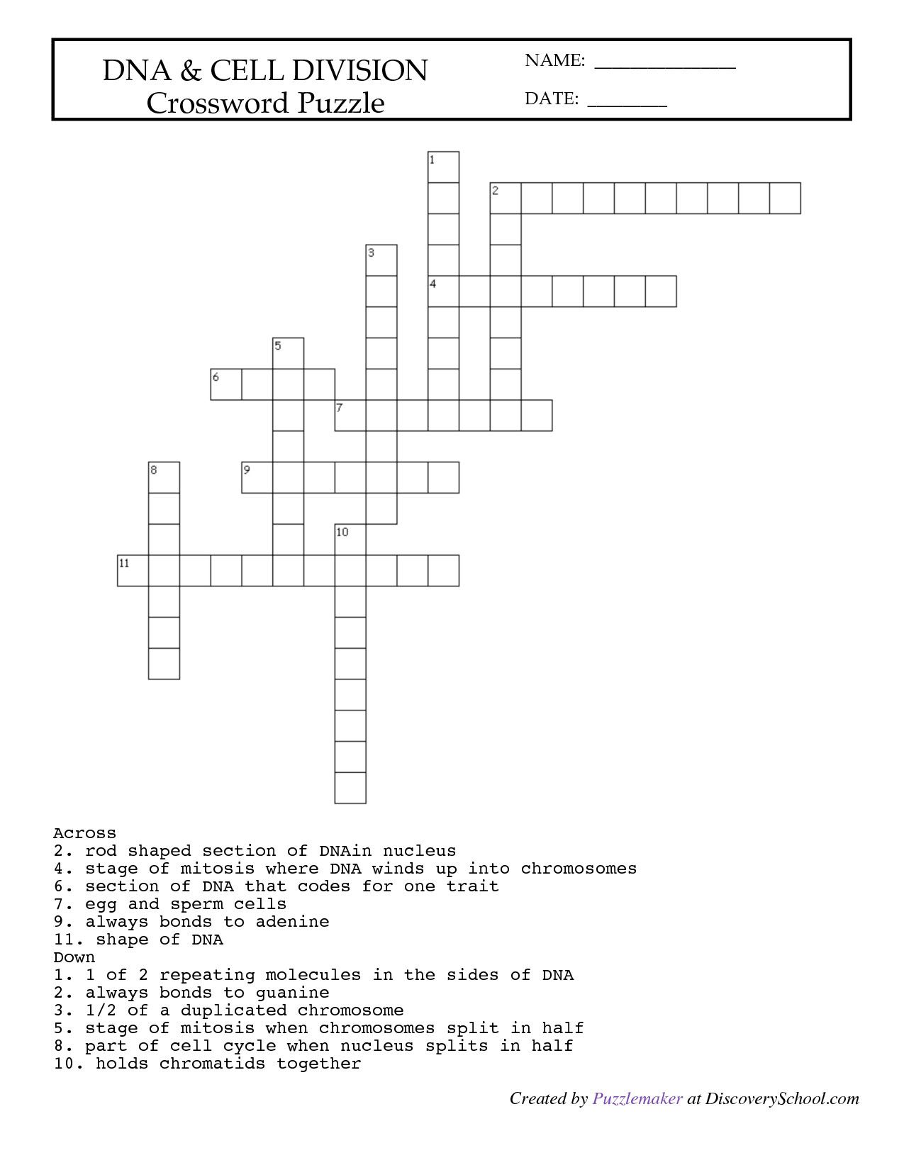 Lab Equipment Worksheet Crossword