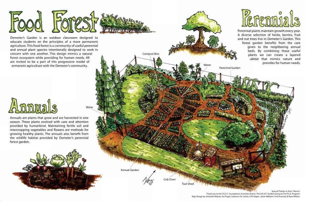 c9b916b514b61124967f40af4617e6ce - What Is The Importance Of Urban Gardening