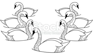 7 swans a swimming - Google Search