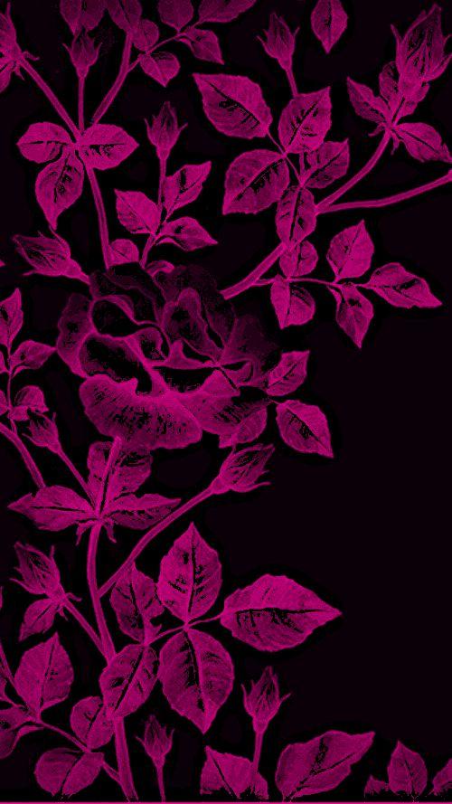 Pink And Black Floral Print Floral Print Wallpaper Flower Wallpaper Flowery Wallpaper