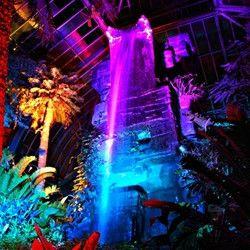 Botanical Gardens Garden Night Lighting Landscape Lighting Design Botanical Gardens