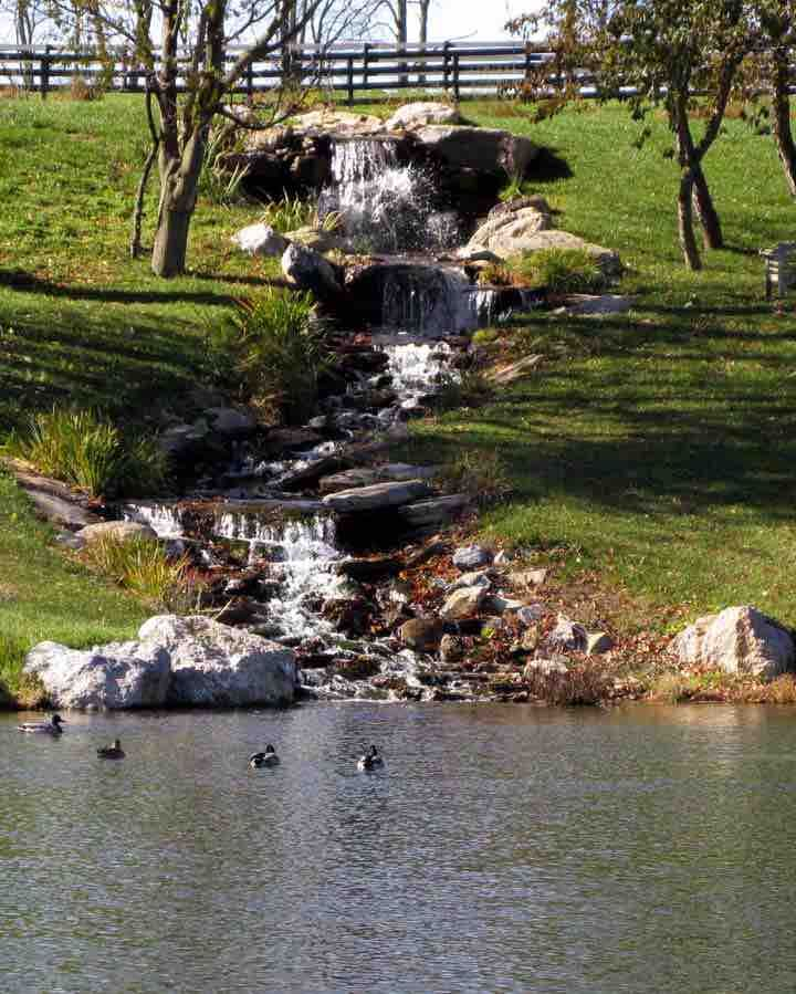 Large recirculating waterfall moves over 40,000 gallons per hour and drains from a wetland bio-filter above to 1-acre pond below. Constructed by Natural Waterscapes.