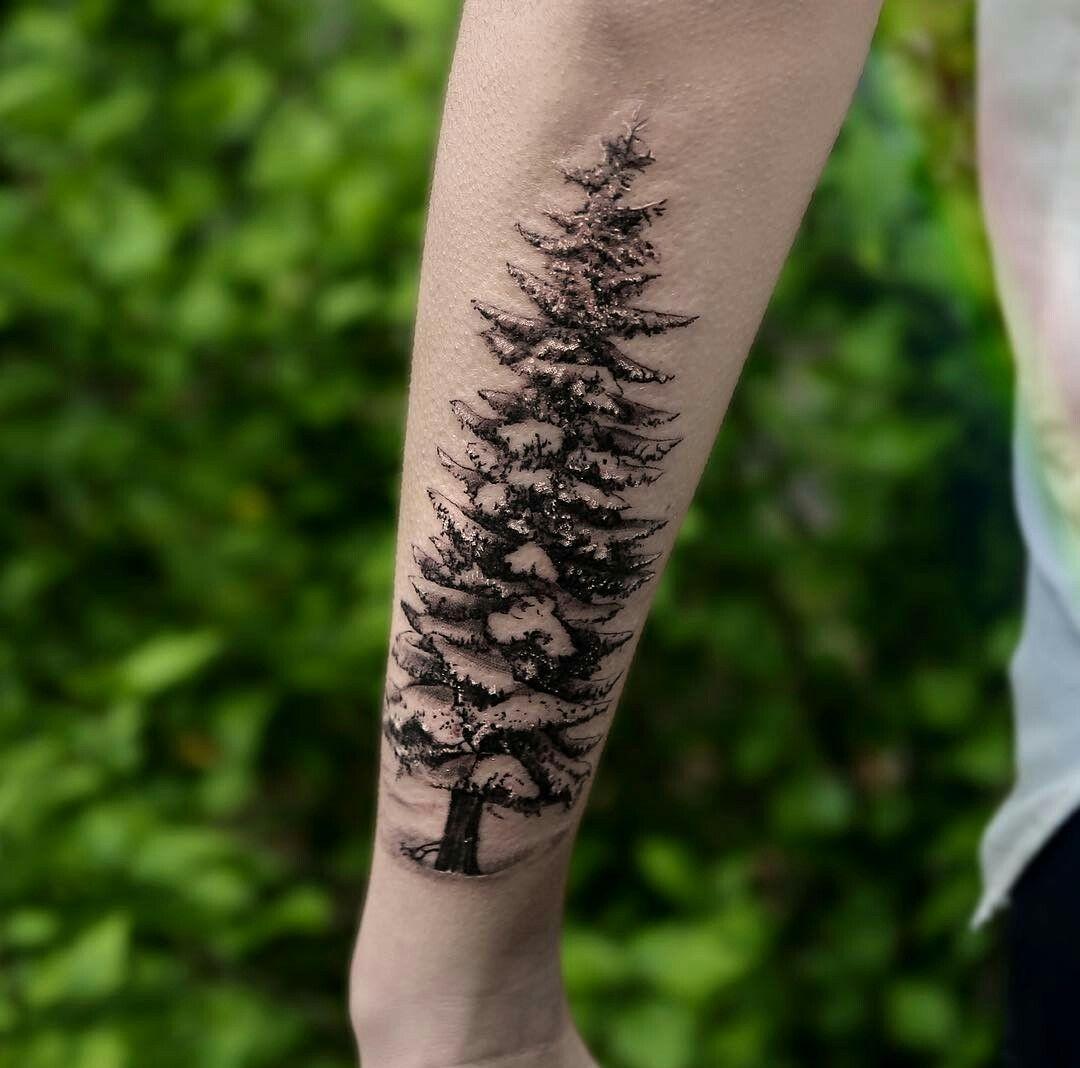 8bcbd2abb1740 Snow pine tattoo   Next tattoo ideas   Pine tattoo, Tattoos, Forest ...