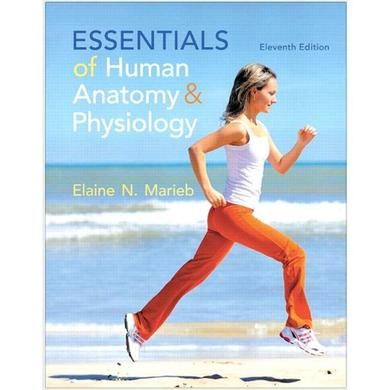 Essentials of Human Anatomy Physiology 11th Edition PDF | Pwrplay\'s ...