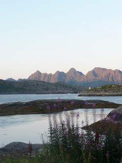 De Lofoten, de mooiste parels van Noorwegen - HLN.be