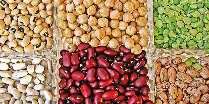 Hay algunos alimentos que ayudan a reducir los niveles de colesterol en sangre. Descubre cuáles son y cuántas veces tienes que tomarlos a la semana.